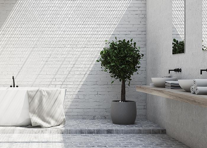 Planten in de badkamer: fris en natuurlijk inspiratie saniweb.nl